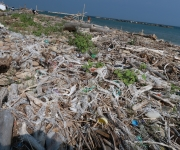 Plastic Ocean (18)